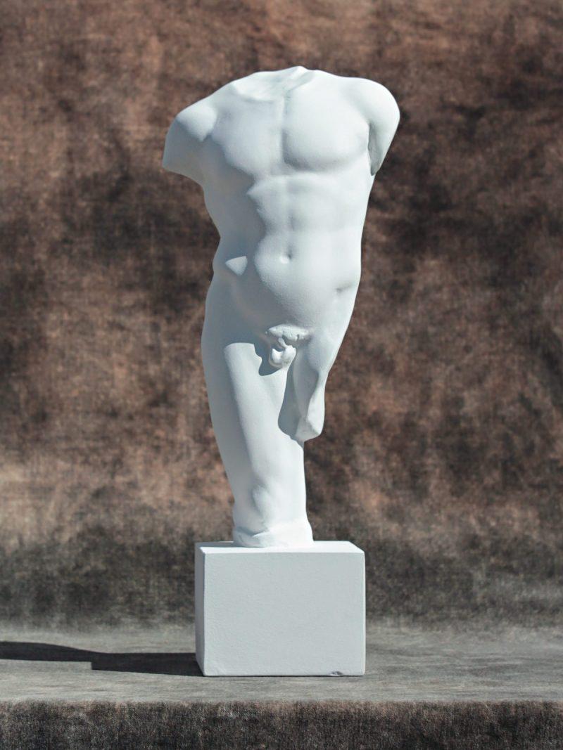 Mies torso