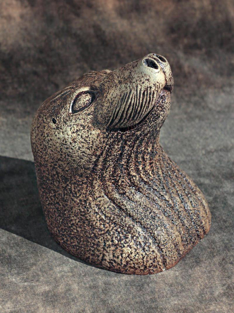 Hylkeenpää